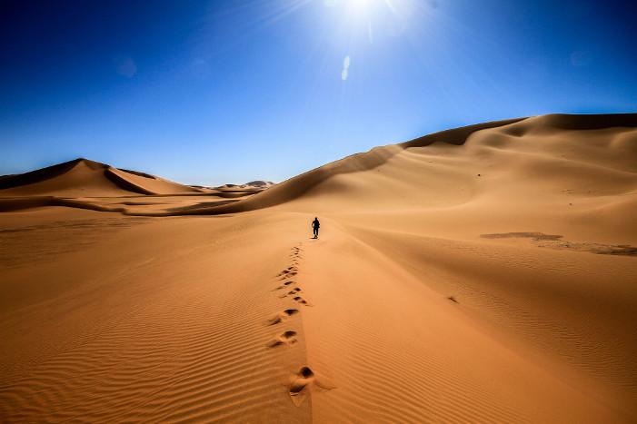 Алжир площадь страны