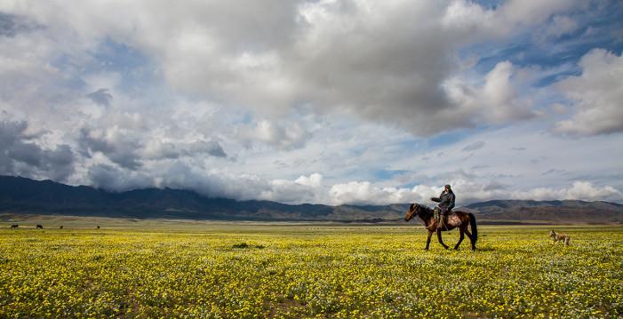 Казахстан площадь страны
