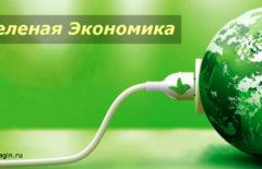 Зеленая экономика - что это такое? Принципы концепции развития. Развитие зеленой экономики в России