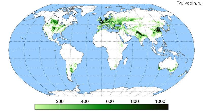 Производство пшеницы в мире на карте посевов