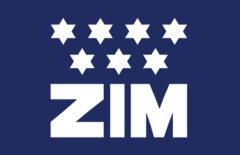 IPO ZIM Integrated Shipping Services на 382.3 млн долларов: аналитика, обзор и финансовые показатели компании