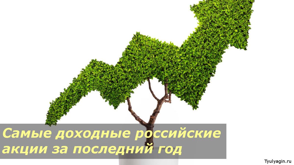 Самые доходные и подорожавшие российские акции на МосБирже за год