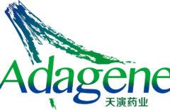 IPO Adagene на 132 млн долларов: аналитика, обзор и финансовые показатели компании
