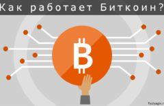 Как работает Биткойн: блокчейн, майнинг, халвинг, хеш и многое другое