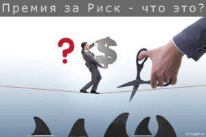 Премия за инвестиционный риск - что это и как рассчитать