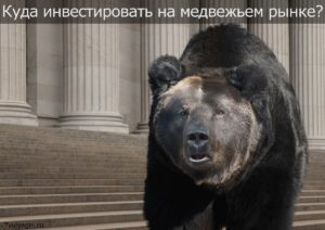 Куда лучше инвестировать деньги на медвежьем рынке