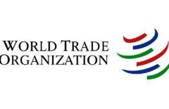 Всемирная торговая организация (ВТО) - что это: суть, преимущества и недостатки