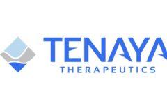 IPO Tenaya Therapeutics Inc. на 150 млн $: обзор компании и финансовые показатели