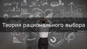 Теория рационального выбора в экономике
